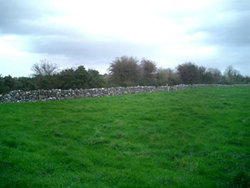 plot of land for sale in ireland