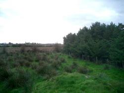 irish land deal