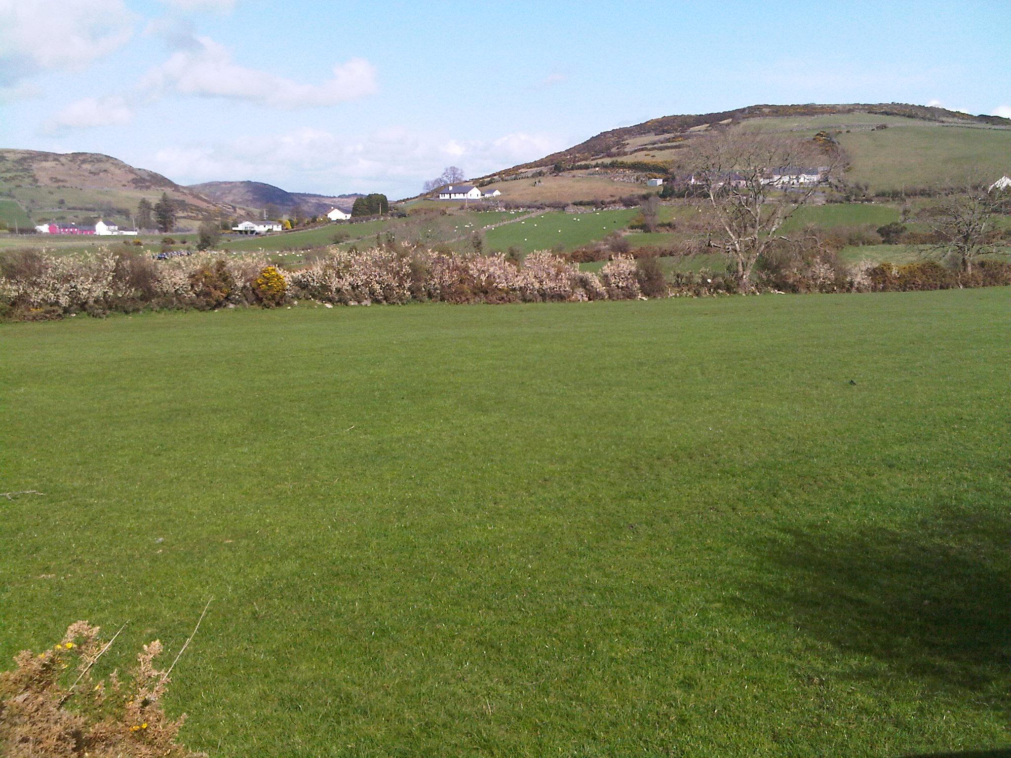 my irish plot of land